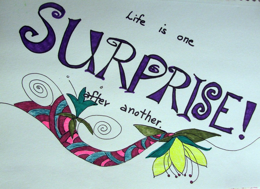 2d life is one surprise  tammyvitale.com