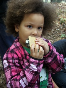11.3.13 smores and more 9
