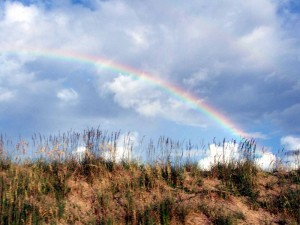 rainbow over sand dunes by Tammy Vitale