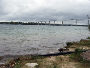 the sandy beach and bridge at Solomons, 3 minutes from my house