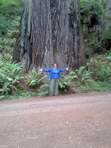 Tammy in front of a redwood tree