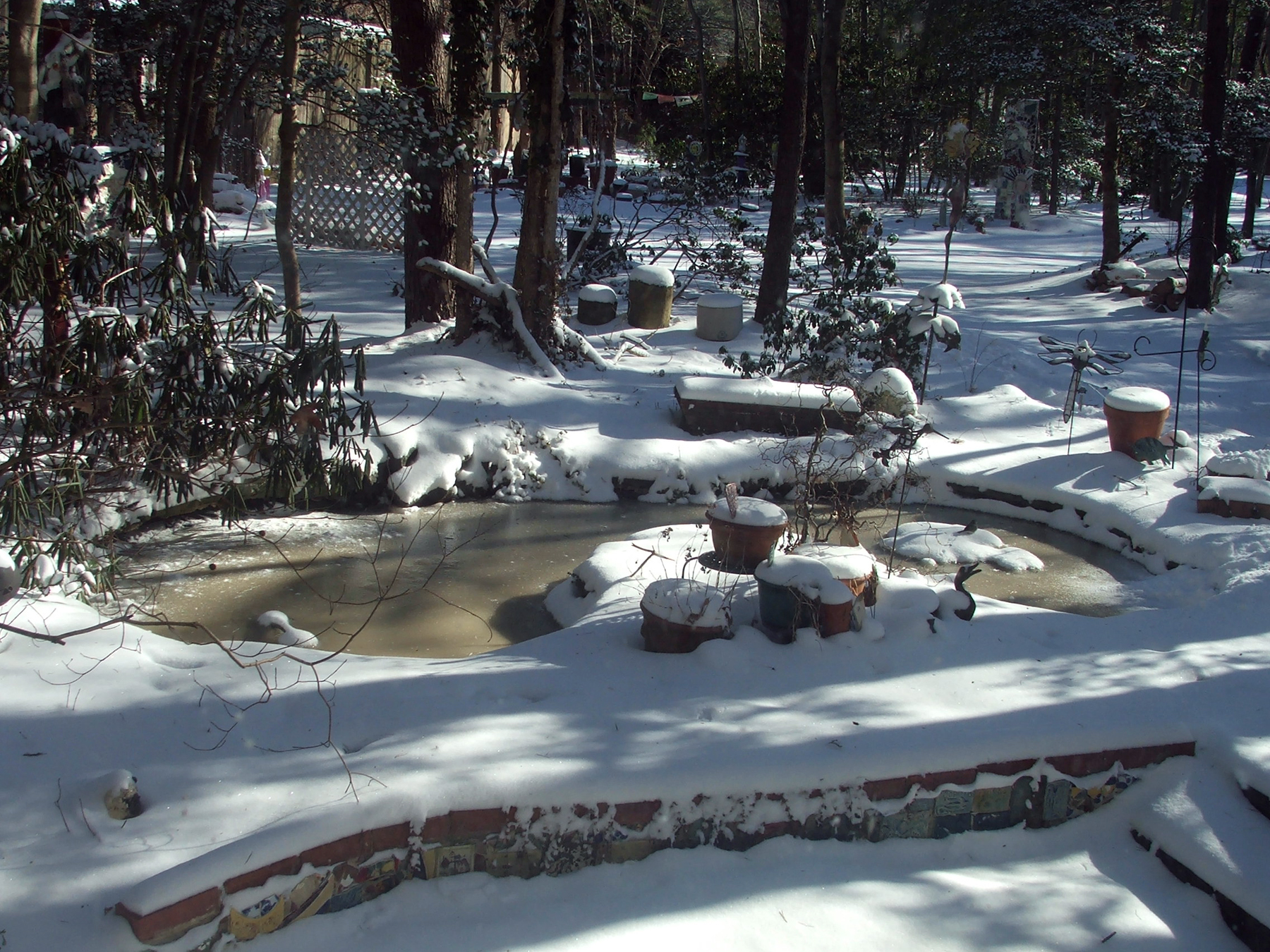 My pond in winter.  Photo by Tammy Vitale 1/23/14