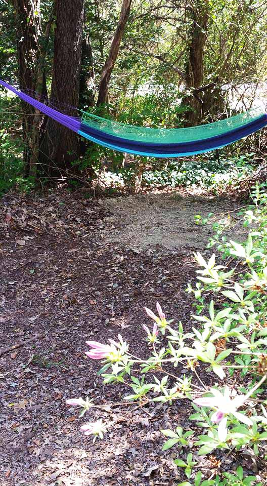 1426 Gregg Drive, Lusby Md hammock through the azalea